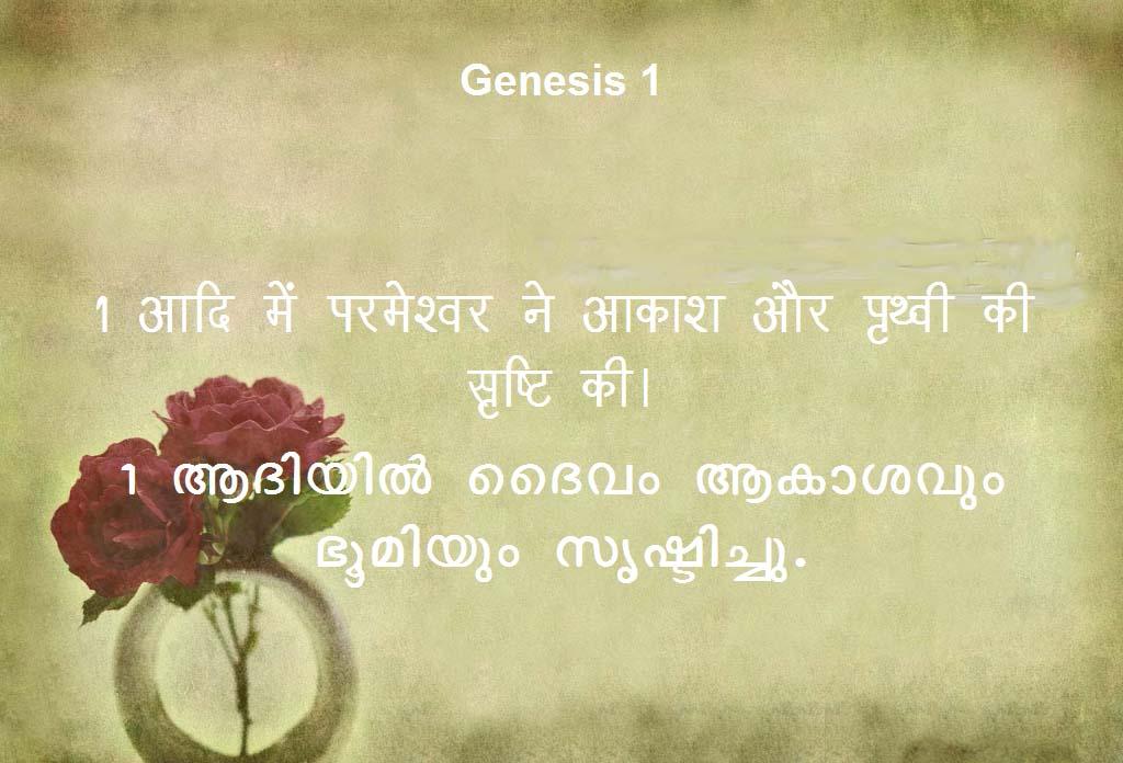 VerseVIEW - Binu Ariyappallil Joseph